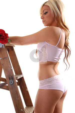 Girl on stepladder. stock photo, Pretty young girl in pink underwear with long blond hair standing on the wooden stepladder, looking to the red rose in her hand. by Horst Petzold